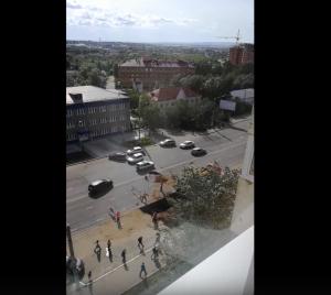 """Кадр из видео, группа """"Регион-75"""" во ВКонтакте"""