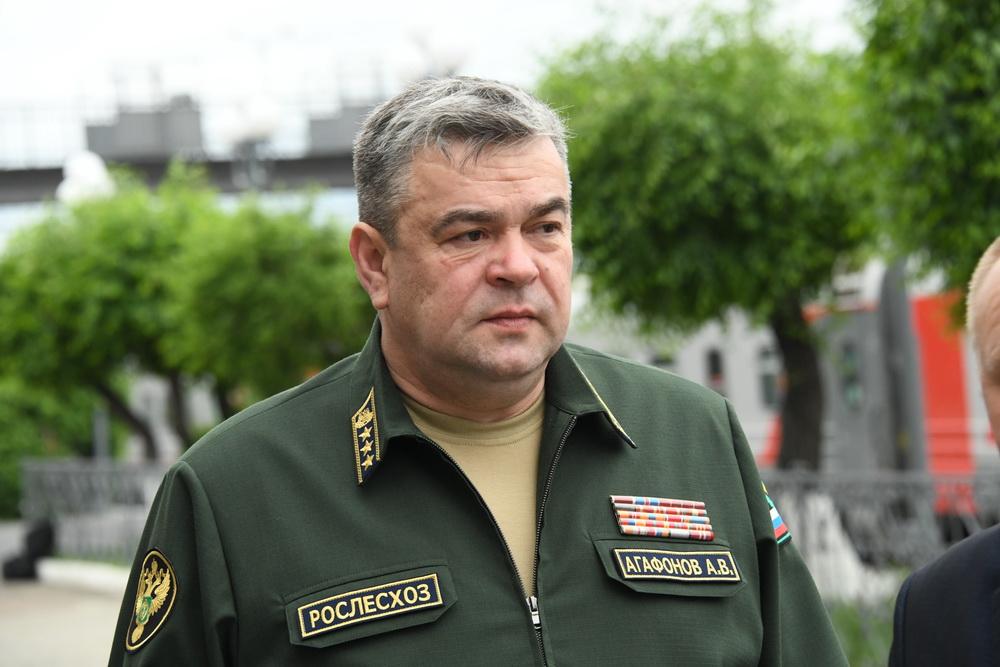 Евгения Епанчинцева